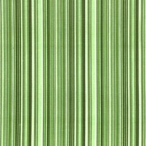 17 - Listrado Verde