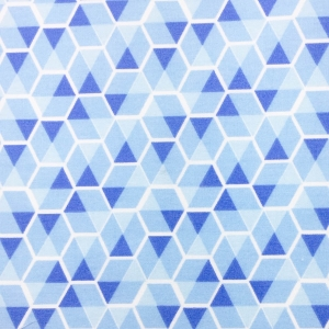 44 - Colmeia Azul