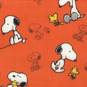 16 - Snoopy