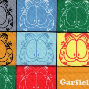 17 - Garfield
